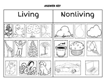 Living vs. Nonliving Sort (to use before introducing fall plants and pumpkin life cycle)