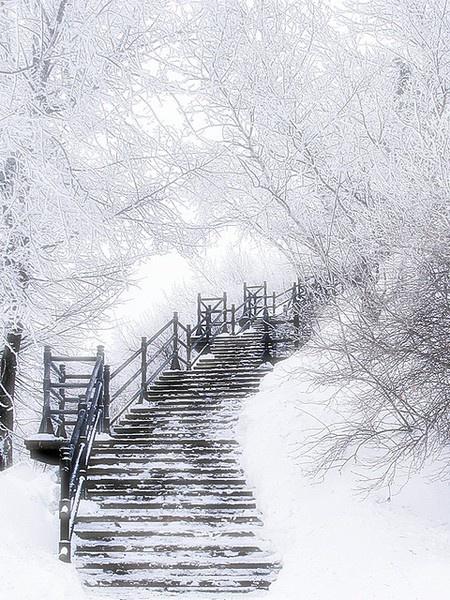 Quebec in the snow                                                                                                                                                                                 Más