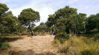 Walk from Cala Agulla to Cala Mesquida