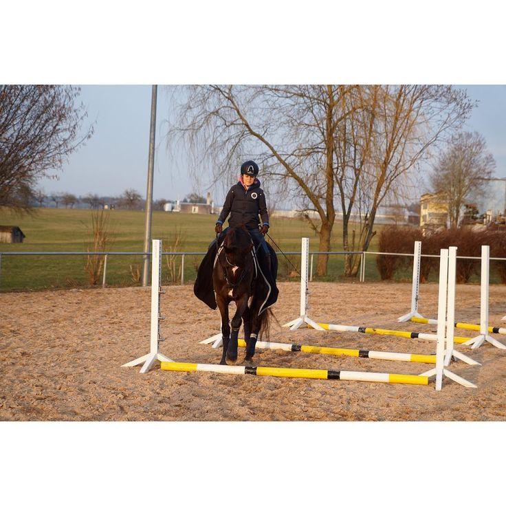 """Before our training session we work with the poles💫 wir bauen die Arbeit mit den Stangen regelmäßig in unsere Trainingseinheiten ein. Ich habe das Gefühl, dass Dylara es auch Spaß macht:) auch wenn sie manchmal nicht richtig aufpasst🙈 auch heute war Dylara super gut drauf 🌪💨 ich sag nur """"Frühlingsgefühle"""" 🤣🤣🤣 habt einen tollen Abend 💋 #dylaras #RiderFashion #teamRF #love #happybobbl #happyathlete #horsebackriding #dressur #dressage #dressurpferd #dressurreiten #dressagehorse…"""