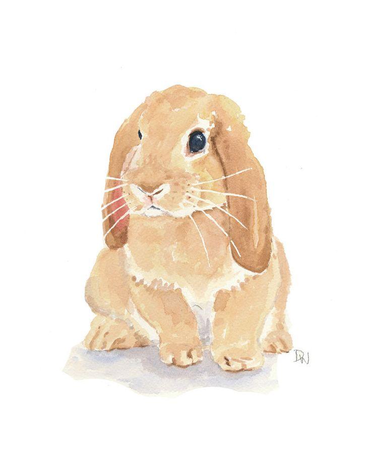 Lop Earred Rabbit by Water In My Paint