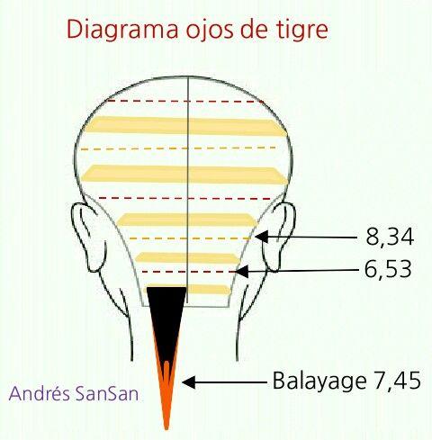 Diagrama ojos de tigre