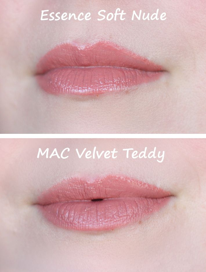25+ Best Ideas About Mac Velvet Teddy On Pinterest