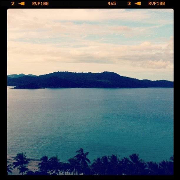 Rush hour @hamiltonisland #return2paradise #instameet  #seeaustralia. World class view!