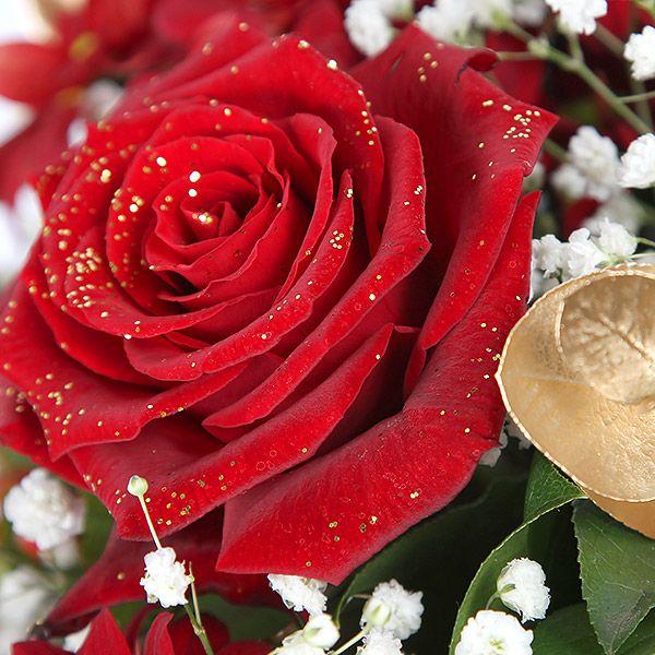 ~ Зимняя роза /// Winter rose ~