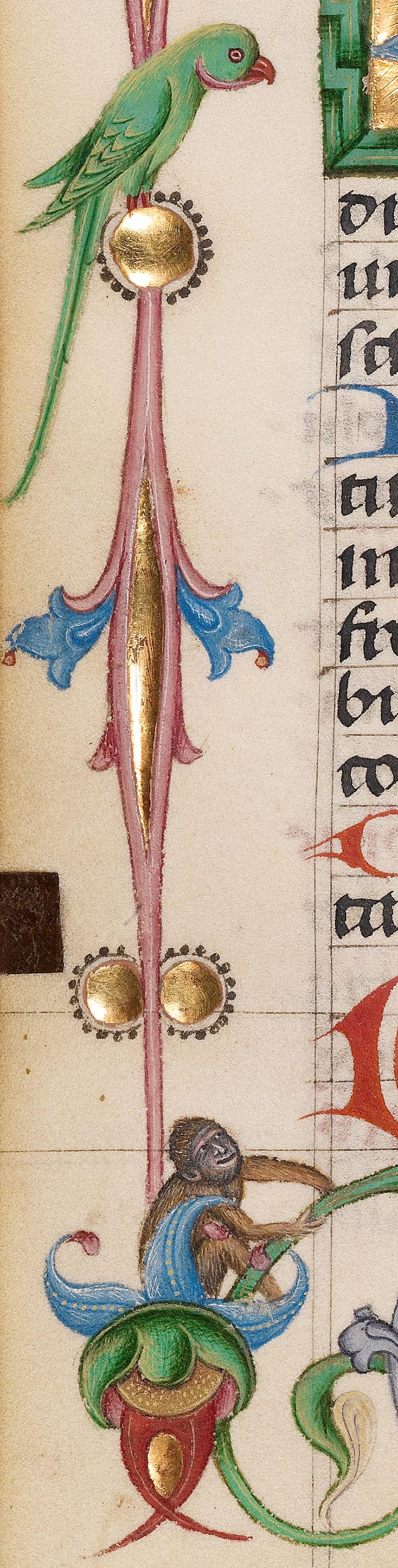 Decorated Initial D (detail), from Ms. Ludwig IX 14, Austrian, about 1485. J. Paul Getty Museum