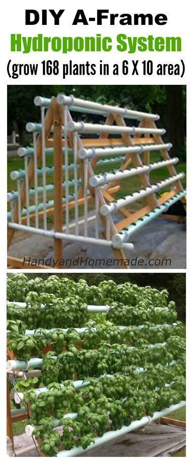 DIY A-Frame Hydroponic System, How To Grow 168 Plants In A 6 X 10 Area #hydroponicsgardening #hydroponicshouseplants