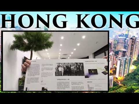 Hong Kong Is Now @ Karatbars - YouTube