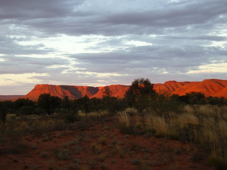 Outback - sunset