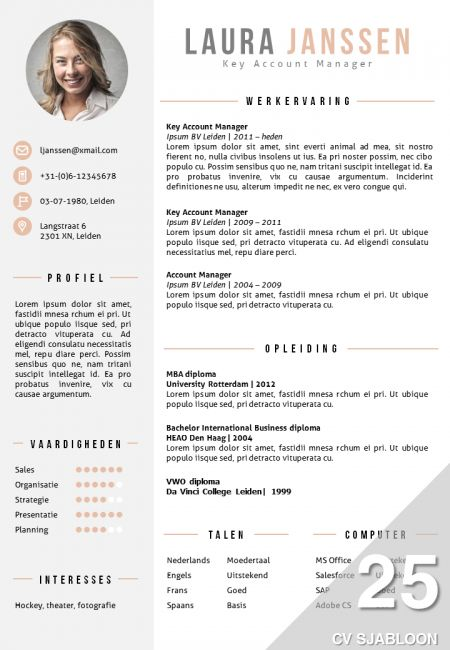28 best cv template images on Pinterest | Resume templates, Cv