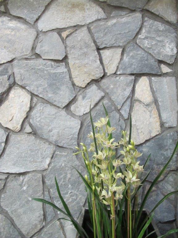 Ushba - Quartzite Natural Stone Veneer