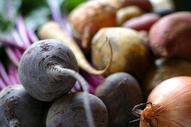1000+ images about Root Crops-Beets, Carrots, Radishes, Turnips, and ...