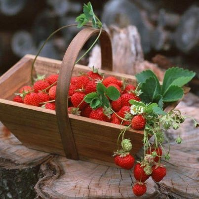 Fresas: Strawberries Patches, Food, Fruits, Vegetables Gardens, Wooden Boxes, Baskets, Fruit Water, Strawberries Fields, Water Recipes