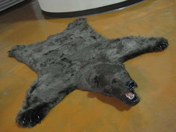 25+ unique bear skin rug ideas on pinterest | bear rug, log homes