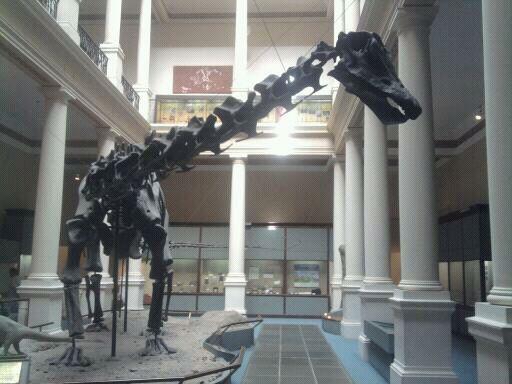 Museo de Ciencias Naturales de La Plata en La Plata, Buenos Aires