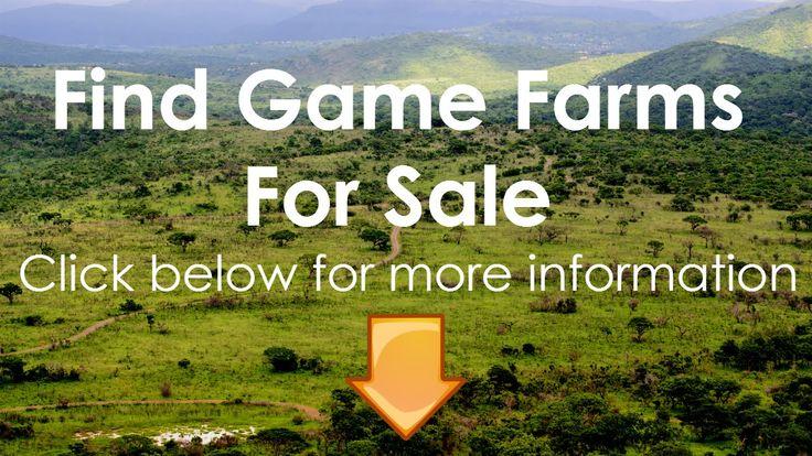 Game Farms For Sale Bela Bela