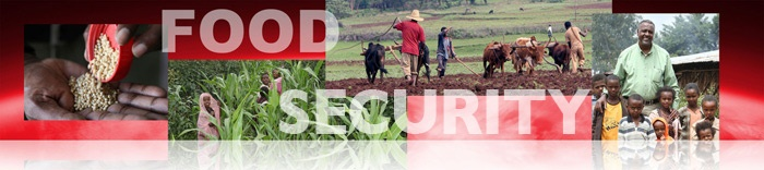 food security fellowship