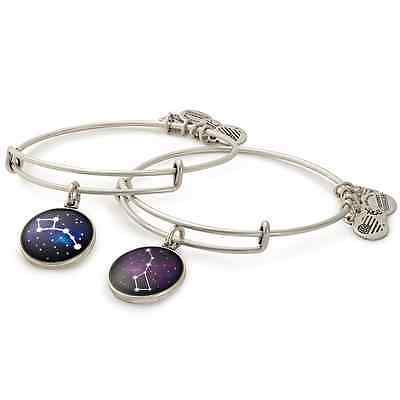 Alex and Ani Big and Little Dipper Set of Two Charm Bangles | Big Brothers Big S