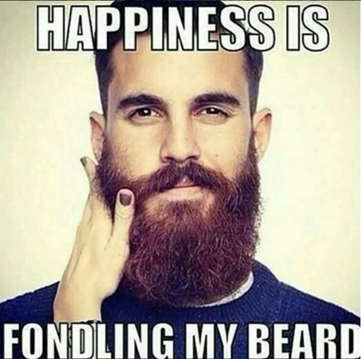 dating website guys with beards memes chistosos This is currently necessary to run apps installed by mojo, but check the developers website frequently for updates learn how you can spy or hack someones snapchat account password, photos, videos and pictures with the.