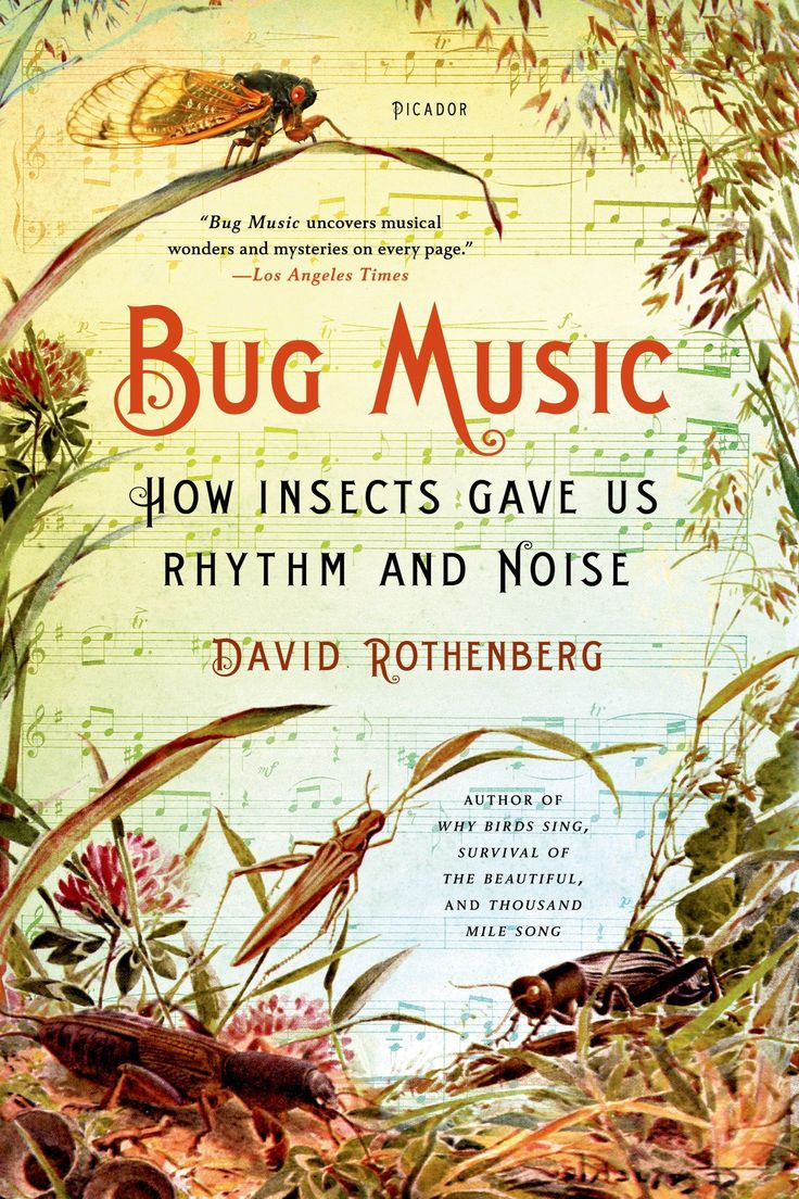 Bug Music: How Insects Gave Us Rhythm and Noise by David Rothenberg #Books #Science #Music #Insects