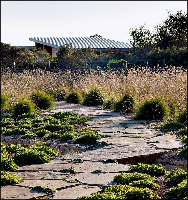 708 best garden landscape design images on pinterest for Ornamental grasses landscape design ideas