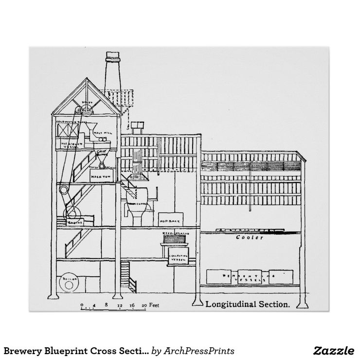 51 best Microbrewery images on Pinterest Brewery, Aquaponics and - new blueprint gene expression