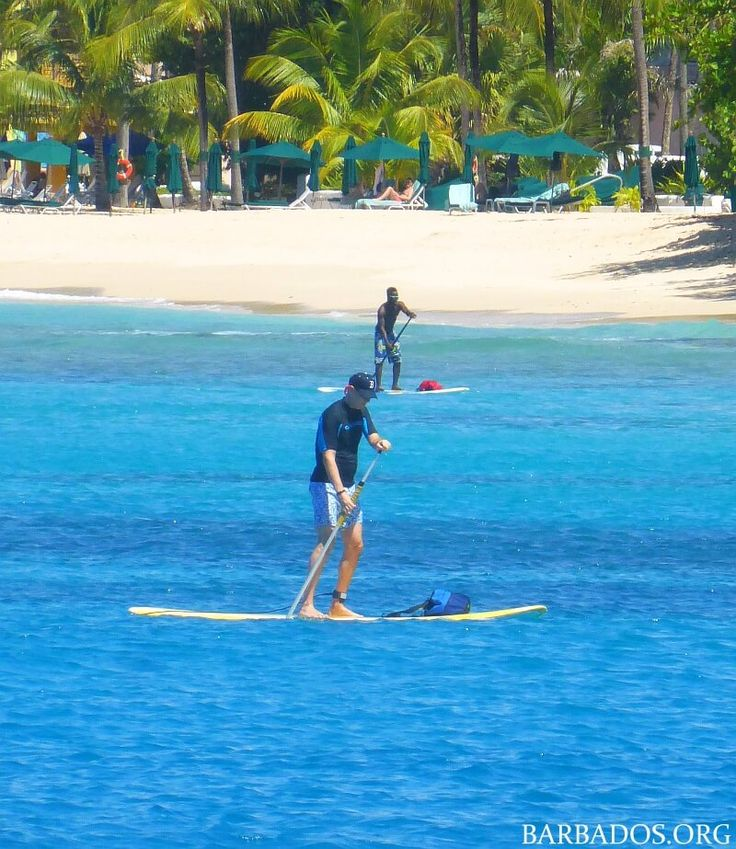 Discover the thrill of stand up paddle boarding in the warm crystal-clear waters around Barbados!