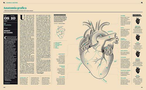 AnatomiaGrafica by Francesco Franchi, via Flickr