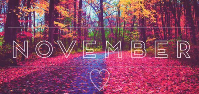 November Timeline cover