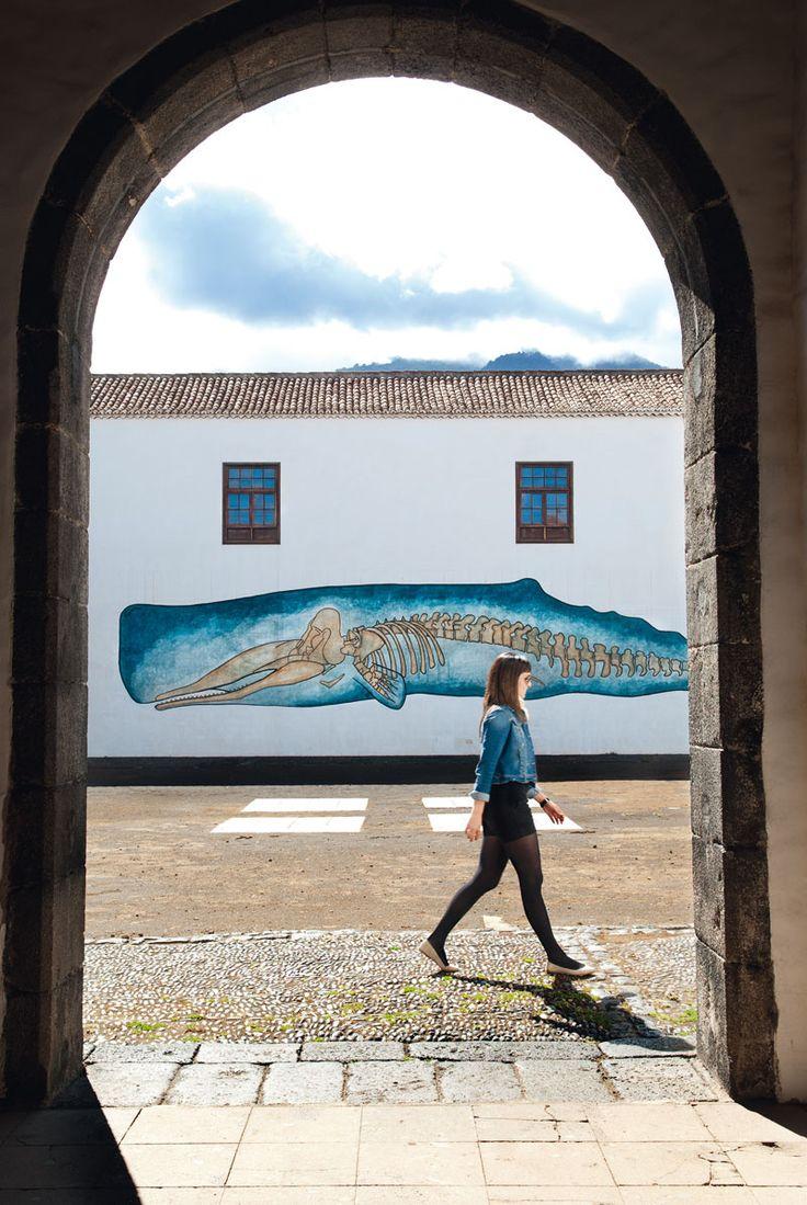 Museo Insular Santa Cruz de la Palma. La Palma. Canarias.