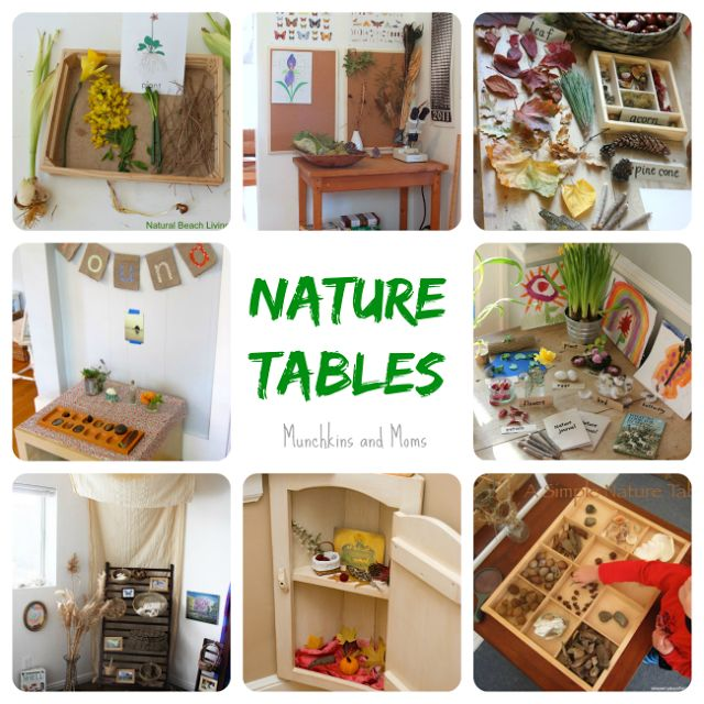 Homeschooling in Small Spaces: Nature Tables by Munchkins and Moms