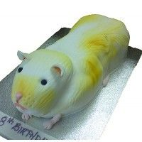 Children's Guinea Pig cake for an 8th birthday party.