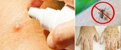 Picadas de insetos: estas 7 soluções caseiros aliviam a coceira e a irritação sem nos intoxicar! - http://comosefaz.eu/picadas-de-insetos-estas-7-solucoes-caseiros-aliviam-a-coceira-e-a-irritacao-sem-nos-intoxicar/