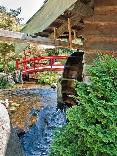 Water wheel in the Japanese garden at the Hobart botanical garden