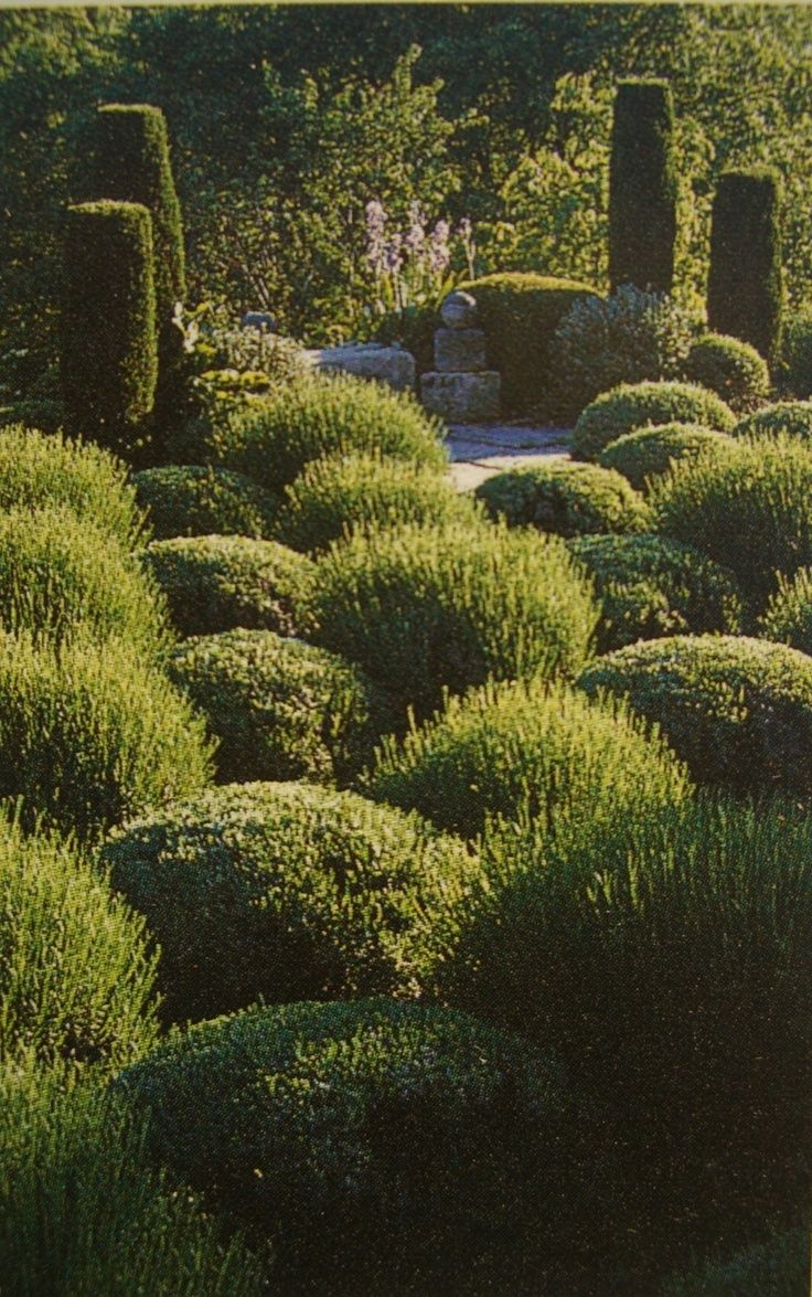 499 best gardens images on pinterest beautiful gardens country
