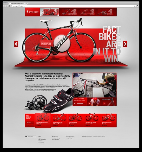 Specialized website layout