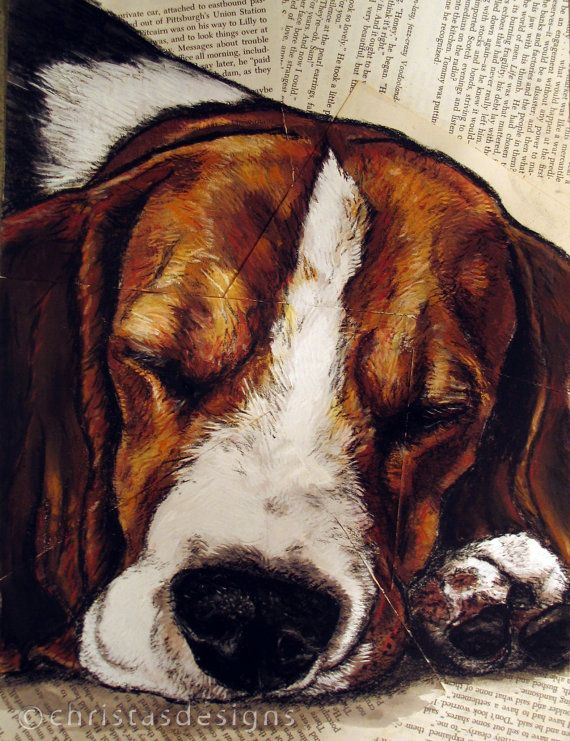 Beagle Sleepy Beagle 8x 10 Art Print by christasdesigns on Etsy, $25.00