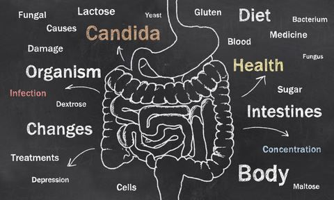 Candida Yeast Overgrowth is Part of a Larger Gut Issue    You may not hear about Candida overgrowth as much anymore, but there's more evidence than ever that this syndrome is real and is often associated with other gut problems that cause a wide variety of symptoms throughout the body.   From MOTHER EARTH NEWS magazine.