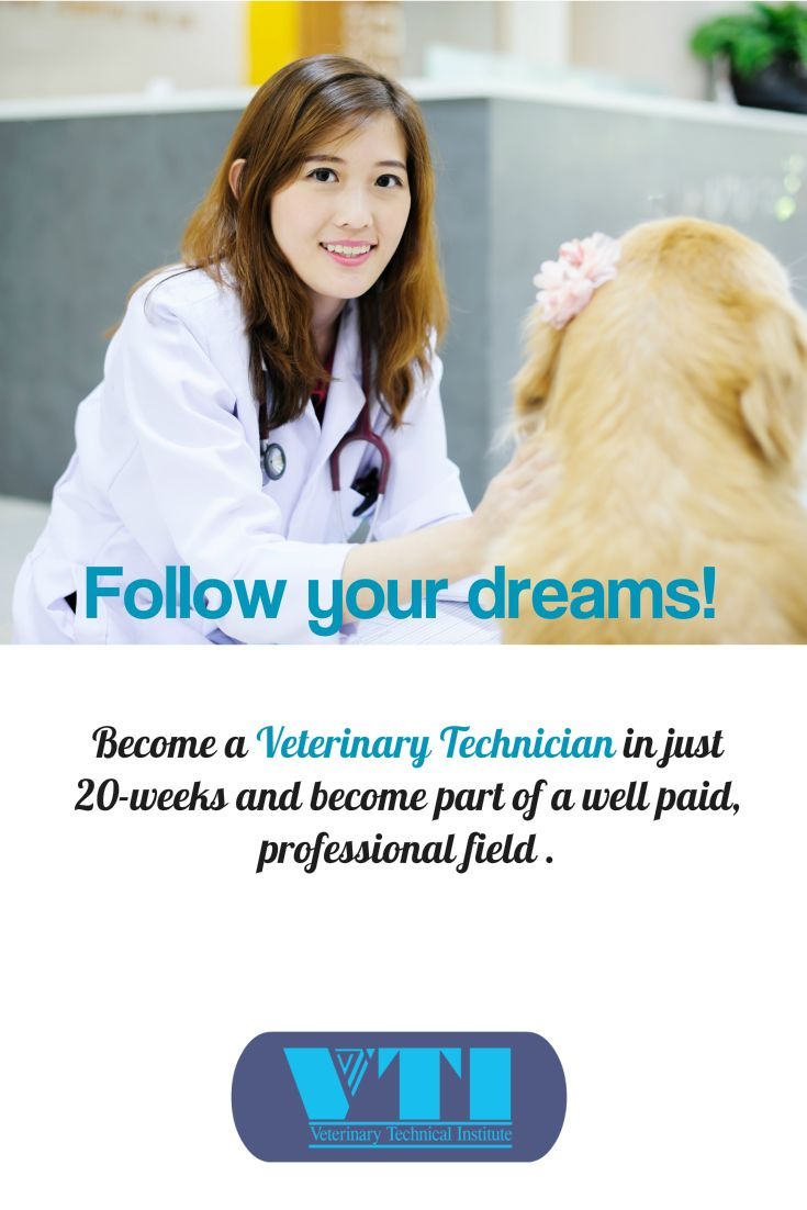 @VTIschool we offer Vet Tech and Receptionist career training diploma programs in a combined online classroom and hands-on clinical experience.  Get educated! Get a career! #VTIschool http://vtischool.com/