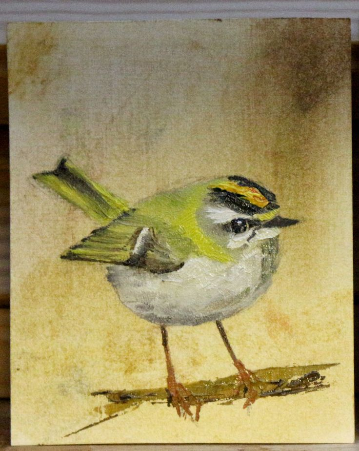 Firecrest - Oil Painting, by Ben Farnell