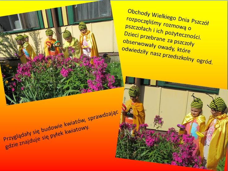 Przedszkole Miejskie nr 37 Olsztyn Akademie Przyjaciół Pszczół
