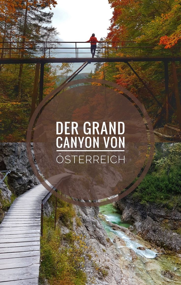 Auf meinem Blog zeige ich dir die schönste Wanderung von Niederösterreich!
