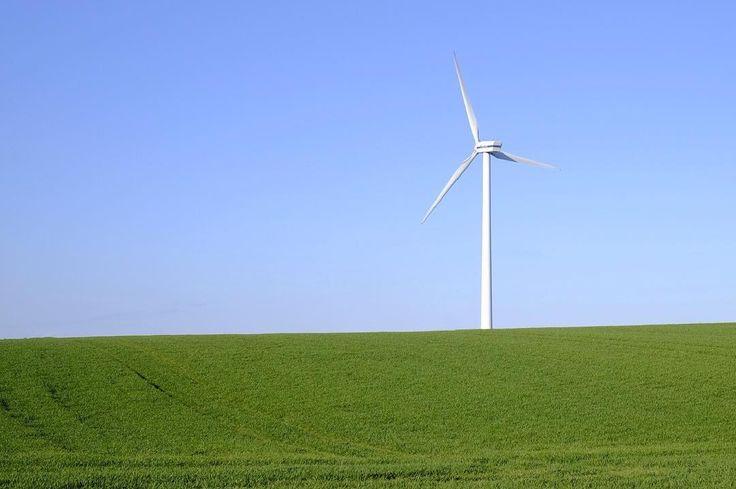 #green #grass #fields with #windmill . #greenenergy #simplistic #fujifilmnordic
