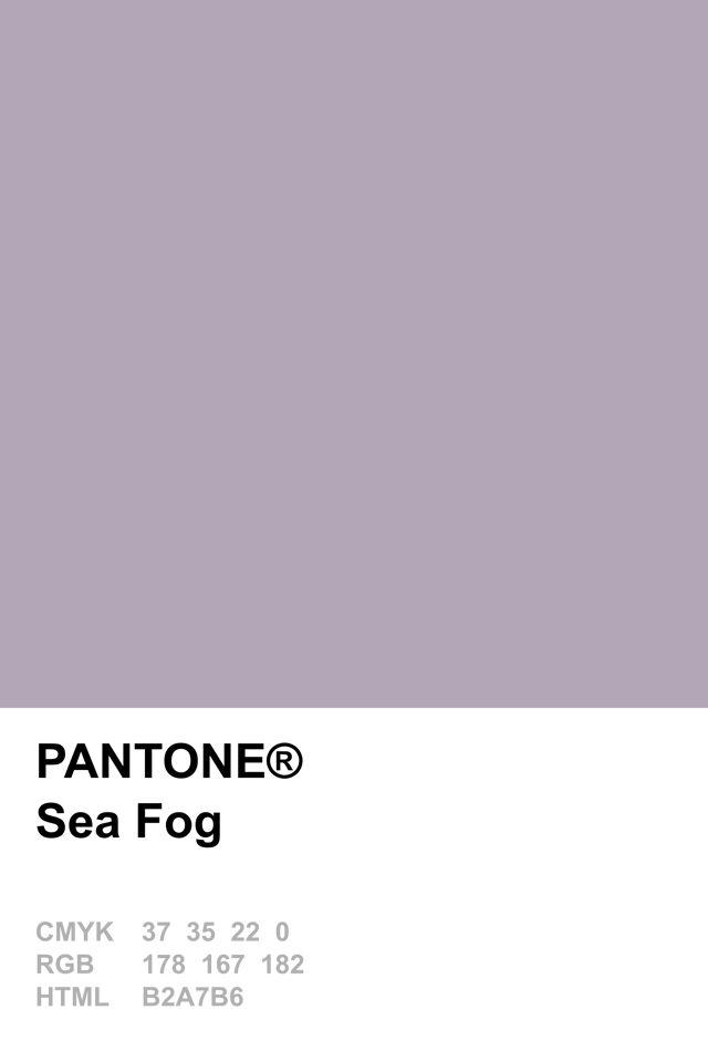 Image result for Sea Fog pantone