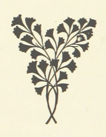 Image taken from page 26 of 'God's Fool. A Koopstad story'   by The British Library