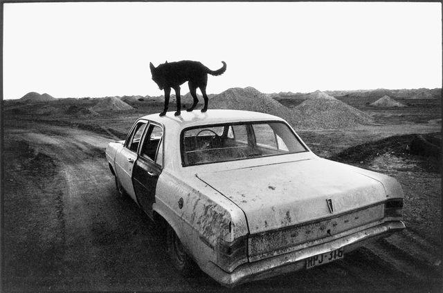 Wim Wenders ha detto che la prima metà della sua vita appartiene al cinema, mentre la seconda metà alla fotografia. E guardando il suo lavoro non è difficile immaginarle legate da una corda molto stretta, che rimanda allo spirito del viaggio. Contrasto ha ripubblicato Una volta, un libro a metà strada tra un diario e un album di famiglia. Leggi