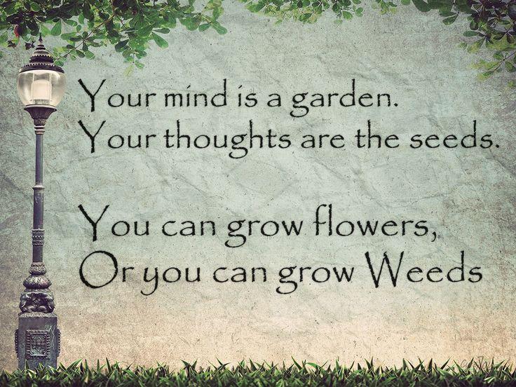 Isn't that so true??