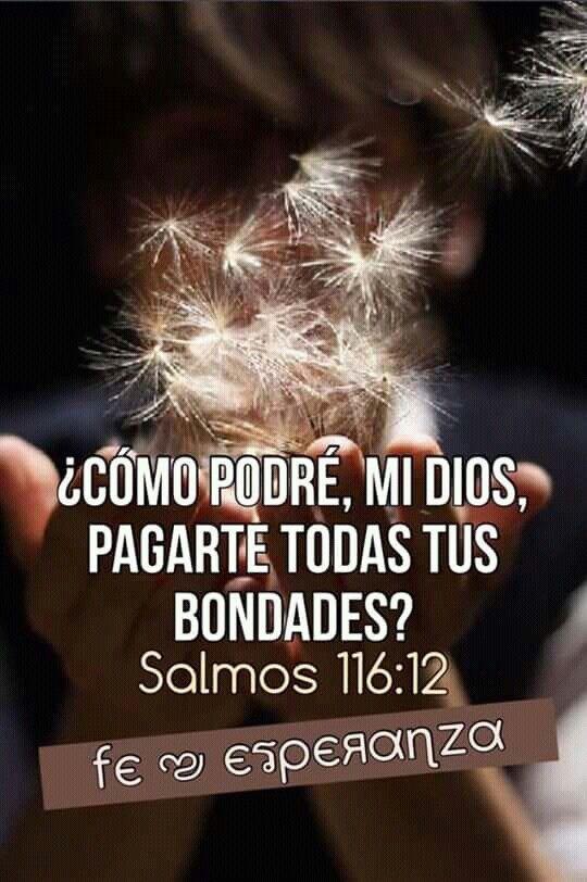 Salmo  116:12