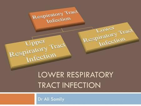LOWER RESPIRATORY TRACT INFECTION Dr Ali Somily. Objectives  To know the epidemiology and main causes of lower respiratory tract infections  The understated.
