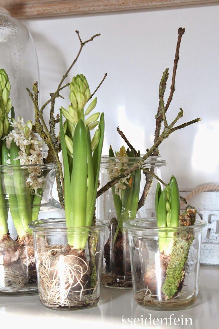 die besten 25 tulpen blumen ideen auf pinterest tulpen blumenfotos wei e tulpen und wei e blumen. Black Bedroom Furniture Sets. Home Design Ideas
